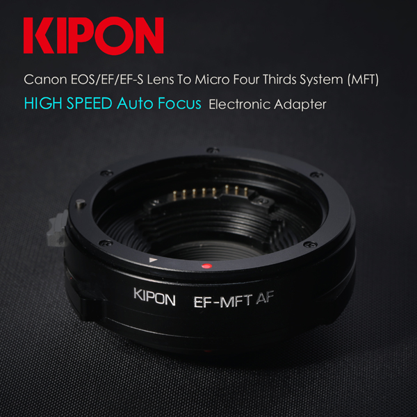 kipon1