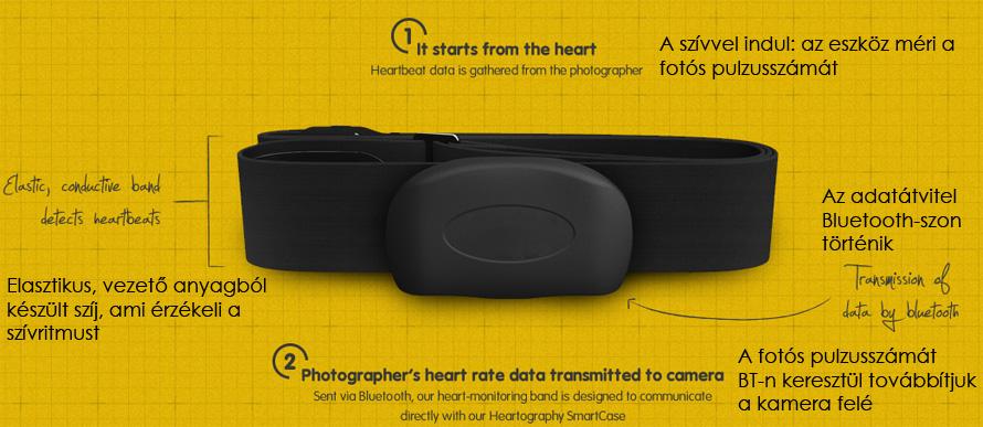 heartography2