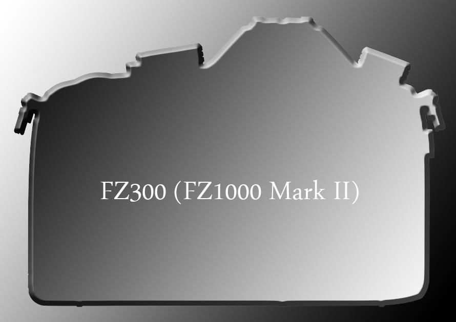fz300